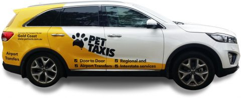 Pet Taxis - Local Pet Transport for South East Queensland